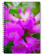 Trumpet Flower 1 Spiral Notebook