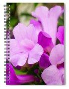 Trumpet Flower 10 Spiral Notebook