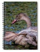 Trumpeter Swan Foot Wave Spiral Notebook