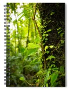 Trunk Of The Jungle Spiral Notebook