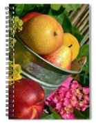 Tub Of Apples Spiral Notebook