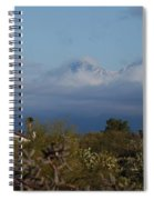Tucson In Winter Spiral Notebook
