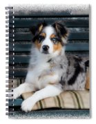 Tucsy Spiral Notebook