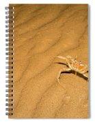tufted ghost crab Ocypode cursor on sand Spiral Notebook