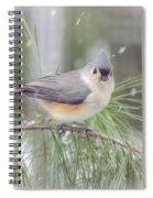 Tufted Titmouse - A Winter Delight Spiral Notebook
