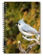 Tufted Titmouse On A Branch Spiral Notebook