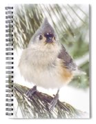 Tufted Titmouse Snow Face Spiral Notebook