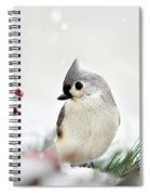 Tufted Titmouse Square Spiral Notebook