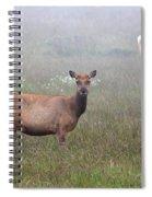 Tule Elk In Fog Spiral Notebook