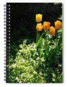 Tulip #1 Spiral Notebook