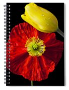 Tulip And Iceland Poppy Spiral Notebook