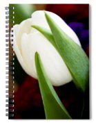 Tulip Arrangement 4 Spiral Notebook