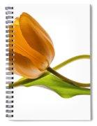 Tulip Art On White Background Spiral Notebook