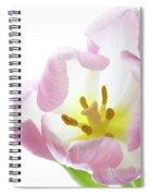 Tulip Bloom 2 Spiral Notebook