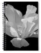Tulip - Bw Spiral Notebook