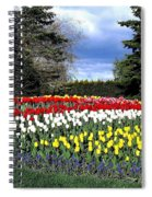 Tulip Country Spiral Notebook