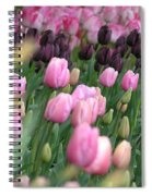 Tulip Dreams Spiral Notebook