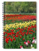 Tulip Fields Spiral Notebook