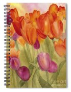 Tulip Glory Spiral Notebook