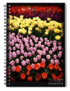 Tulip Greeting Card Spiral Notebook