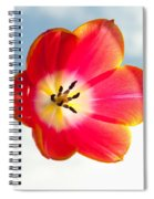 Tulip In The Sky Spiral Notebook
