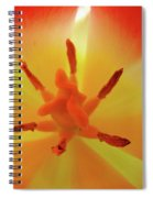 Tulip Inside Flower Orange Tulips Art Prints Baslee Spiral Notebook