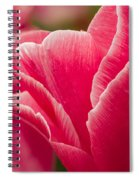 Tulip Layers Spiral Notebook