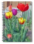 Tulip Mixture Spiral Notebook