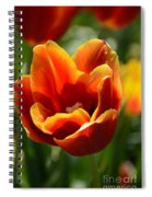 Tulip On Fire Spiral Notebook