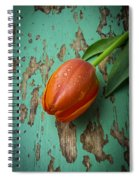 Tulip On Old Green Table Spiral Notebook