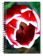 Tulip Opening Spiral Notebook