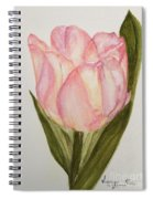 Tulip Watercolor Painting -triumph Tulip Spiral Notebook