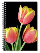 Tulip Passion Spiral Notebook