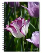 Tulip Splendor Spiral Notebook