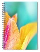 Tulip Tips Spiral Notebook