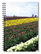 Tulip Town 11 Spiral Notebook