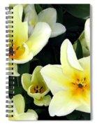 Tulip Town 16 Spiral Notebook