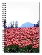 Tulip Town 3 Spiral Notebook