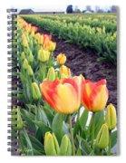 Tulip Town 6 Spiral Notebook