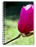 Tulip Tree Blossom Spiral Notebook