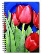 Tulipfest 1 Spiral Notebook