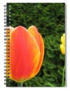 Tulipfest 4 Spiral Notebook