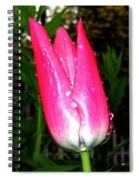 Tulipfest 6 Spiral Notebook
