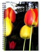 Tulipfest 9 Spiral Notebook