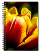 Tulips 7 Spiral Notebook