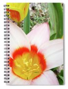 Tulips Artwork 9 Spring Floral Pink Tulip Flowers Art Prints Spiral Notebook