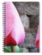 Tulips Artwork Flowers 26 Pink Tulip Flowers Art Prints Nature Floral Art Spiral Notebook