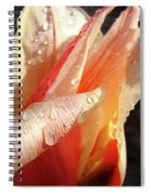 Tulips Artwork Flowers Floral Art Prints Spring Peach Tulip Flower Macro Spiral Notebook