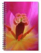 Tulips Artwork Pink Purple Tuli Flower Art Prints Spring Garden Nature Spiral Notebook