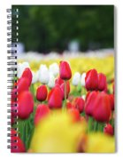 Tulips By Jared Windmuller - Tulip - Red -  Spiral Notebook